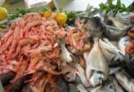 Controlli nel quartiere Brancaccio, 3 ambulanti multati e oltre 120 chili di prodotti ittici sequestrati