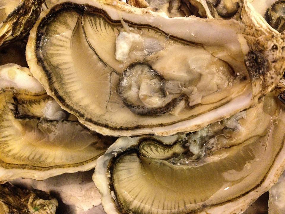 Intossicati dalle ostriche: vincono il ricorso dopo 7 anni