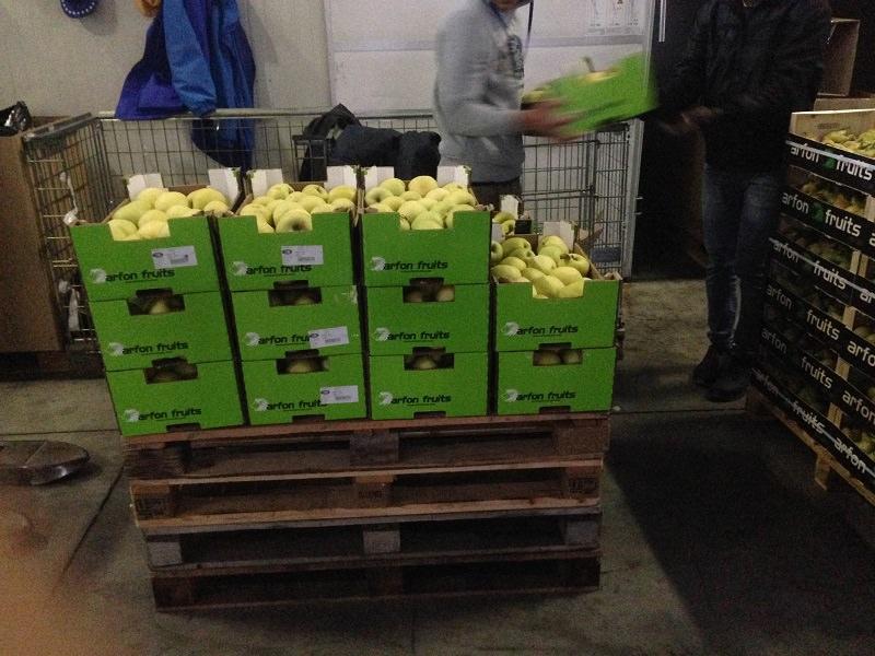8 tonnellate di frutta e ortaggi consegnate al Banco Alimentare della Sicilia onlus