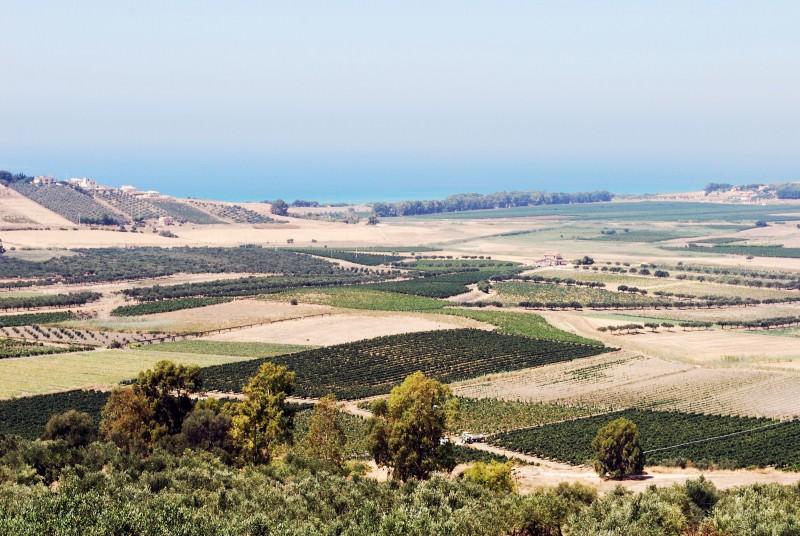 Gal Valle del Belice: approvato il finanziamento di oltre 3 milioni di euro