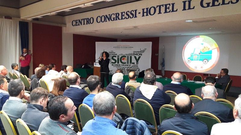Distretto agrumi di Sicilia: Sì al nuovo patto di sviluppo