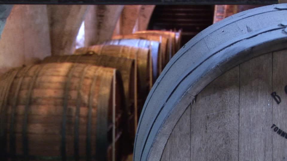Ritrova 174 milioni di vecchie lire in una botte di vino, ma la banca si rifiuta di cambiarli