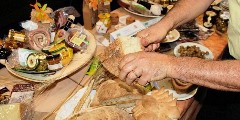 Imprese artigiane e turistiche: Sicilia al primo posto tra le regioni del Sud