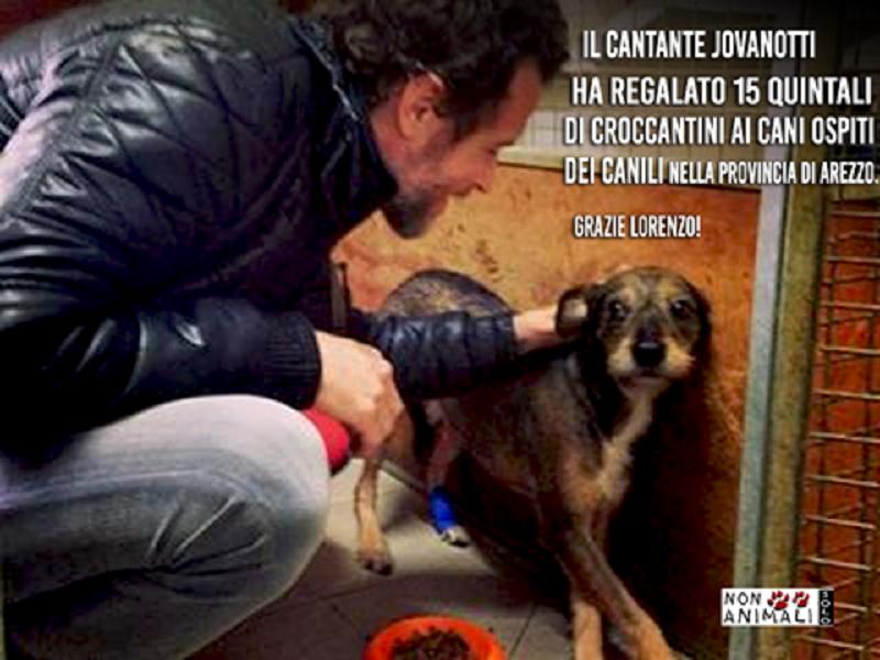 Jovanotti dona 15 quintali di crocchette ad un canile: gesto nobile per i cuccioli