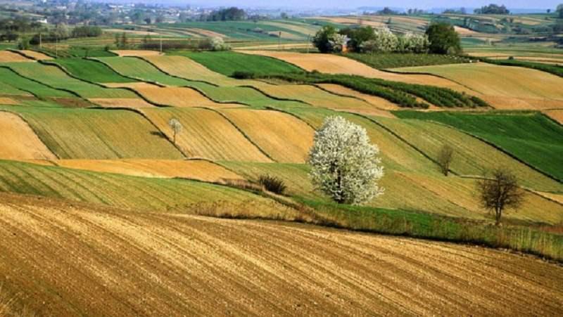 Modica, presentato progetto per impianto di produzione di biometano alimentato solo da scarti e sottoprodotti agricoli