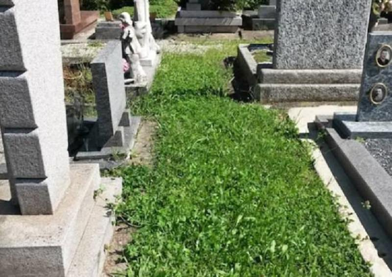 Brontese muore a Milano, omicidio o suicidio? Le indagini dei carabinieri