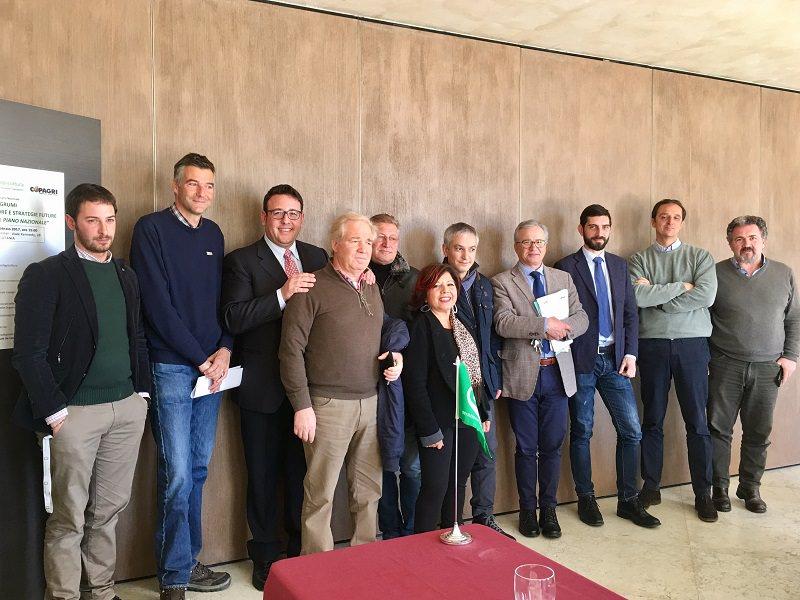 Agrumi, convegno nazionale il 24 a Catania