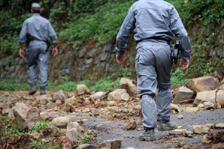 Gruppo di scout si perde nel bosco: ragazzi ritrovati dopo ore di ricerche