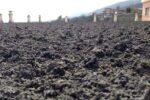 """Cenere dell'Etna, Musumeci dichiara lo stato di emergenza: """"Un eccesso di prudenza, ma non è mai troppa"""""""