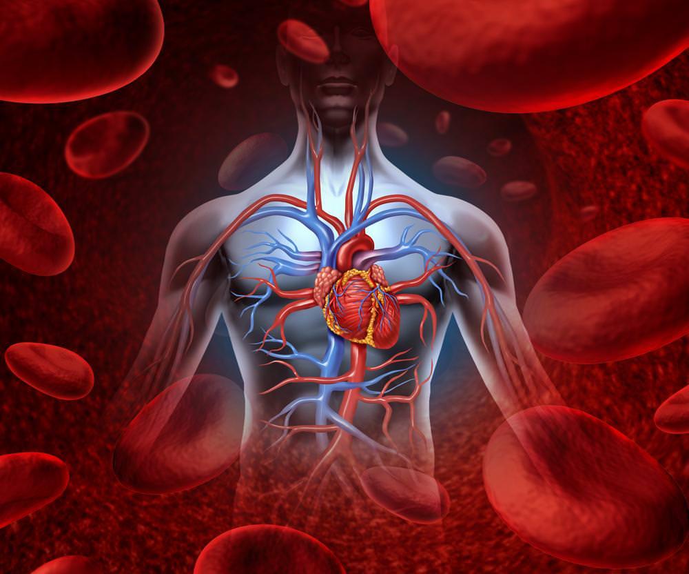 Modello di assistenza alle malattie cardiovascolari croniche