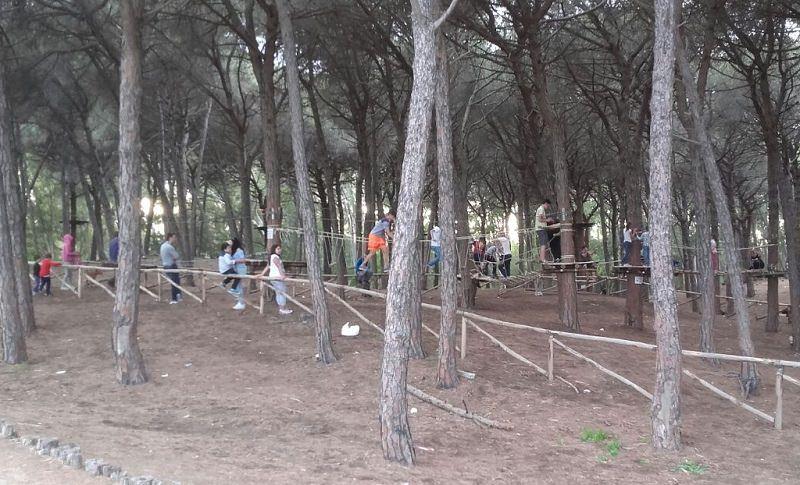 Catania, Il Boschetto della Playa non è più in vendita: sarà destinato a parco pubblico
