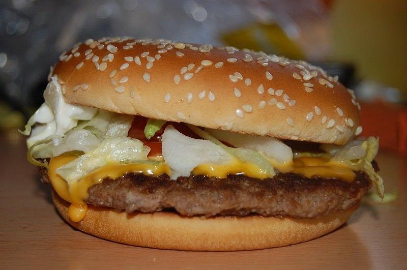 Morde un gabbiano perché gli ruba il panino del Mc Donald's: arrestato 26enne, rischia il carcere