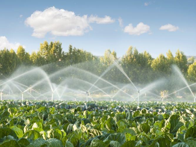 """""""Operazione H20"""", furti di acqua: 26 indagati, sono tutti imprenditori agricoli e gestori di aziende di Gela e Butera"""