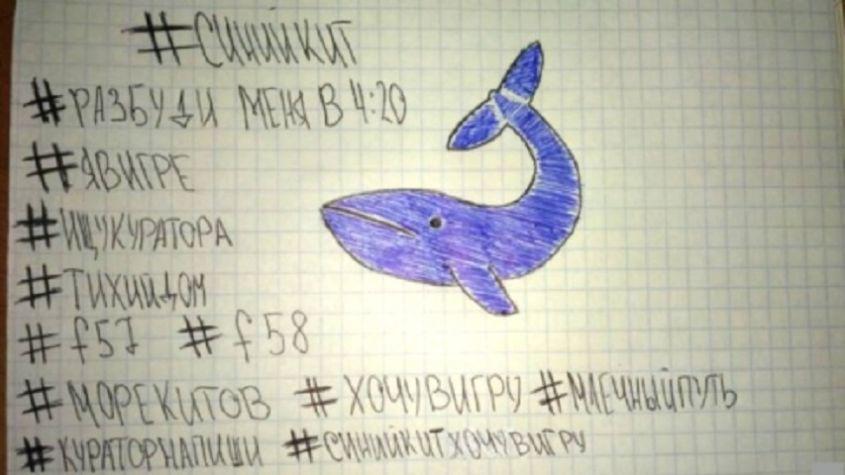 Conoscere e combattere la Blue Whale: cosa succede nella mente delle giovani vittime?