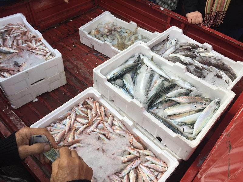 """""""Slow Fish"""", nascono in Sicilia i laboratori del gusto"""