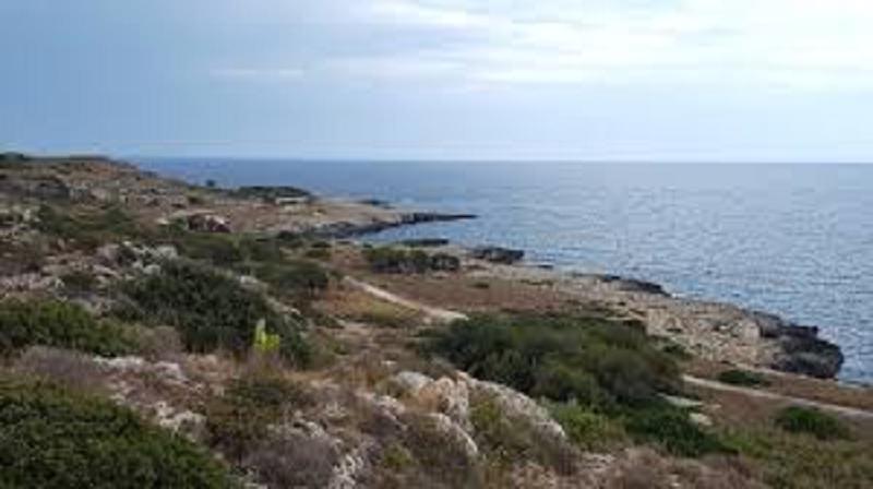 Punta Izzo, un parco naturale da salvaguardare