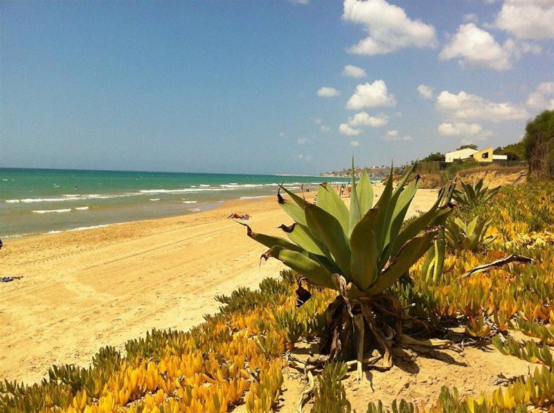 Bandiere Blu sventolano in 17 spiagge siciliane