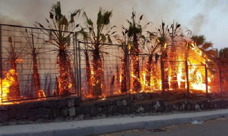"""Paura a Vampolieri, vasto incendio """"divora"""" la collina. Residenti in strada: minacciata una abitazione"""