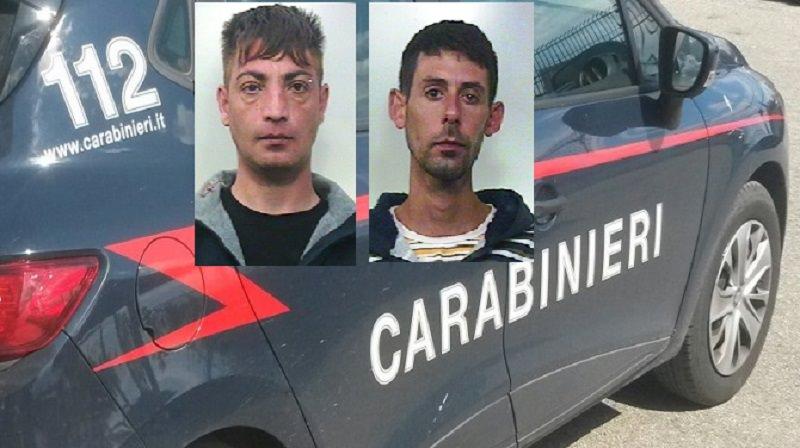 Coltivano oltre mezza tonnellata di droga: arrestati due 35enni
