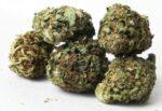 Modica, giovani arrestati in flagranza per spaccio: soldi e 40 grammi di marijuana sotto al sedile