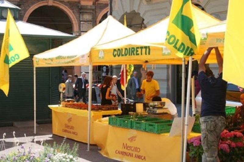 """Le uova in Sicilia sono sicure: """"Combattere gli allarmismi"""""""