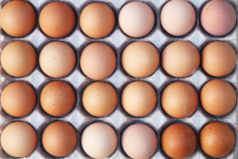 """Uova contaminate si """"spargono"""" in tutta Europa: la situazione dell'Italia"""