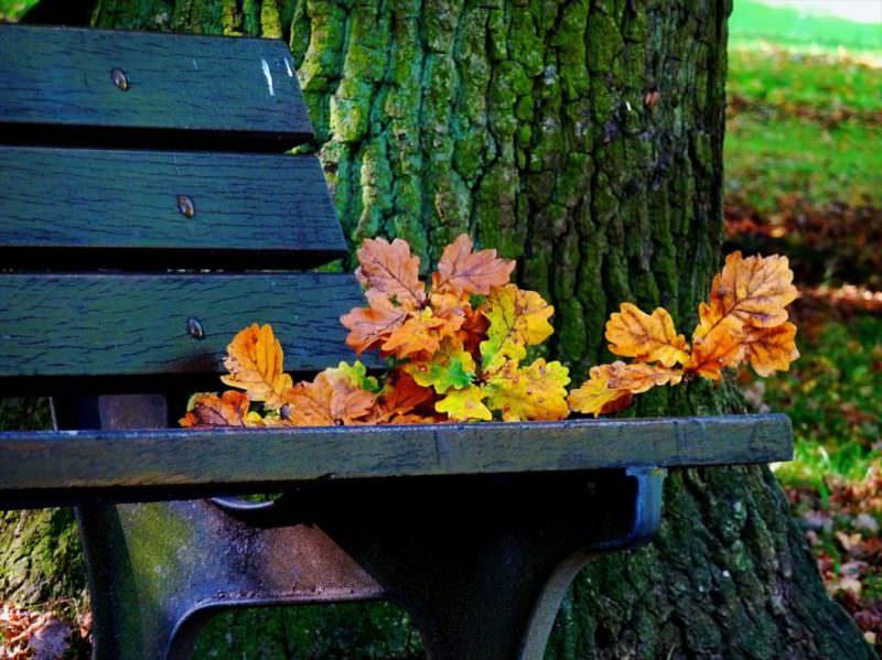 I colori dell'autunno: tutte le gradazioni dell'outfit perfetto in base al tuo incarnato