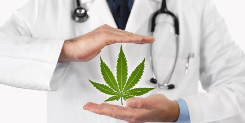 La cannabis può combattere i tumori e rafforzare il sistema immunitario? I risultati del nuovo maxi-studio clinico