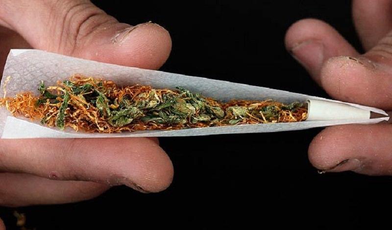 Piante di cannabis in balcone e in lavanderia: infiorescenze ad essiccare su stendiabiti. Arrestato Salvatore Cavallaro