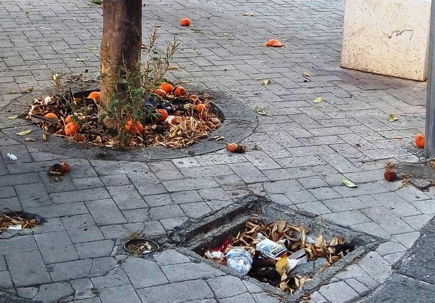 Degrado, sporcizia, abbandono e incuria: nel quartiere Borgo-Sanzio la raccolta rifiuti non funziona