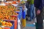 Vendeva frutta e verdura ma la moglie percepiva il Reddito di Cittadinanza: denunce, multe e sequestri