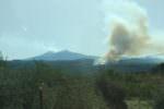 Fiamme e fumo nero: brucia il Parco dell'Etna tra Linguaglossa e Piedimonte Etneo