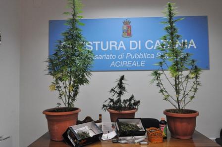 Marijuana a cocaina nel Catanese: beccati una donna e un pregiudicato