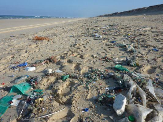 Risultati immagini per plastica nelle spiagge