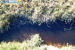 """Fiume Magazzolo scuro per presenza di acque di vegetazione, Mareamico: """"Servono controlli nei frantoi"""""""