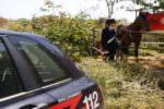 """Lanciano cavallo al galoppo alla circonvallazione, operazione """"al buio"""" dei militari: 3 denunce"""