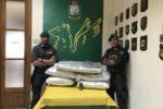 Blitz nel Catanese: dentro casa oltre 84 chili di marijuana