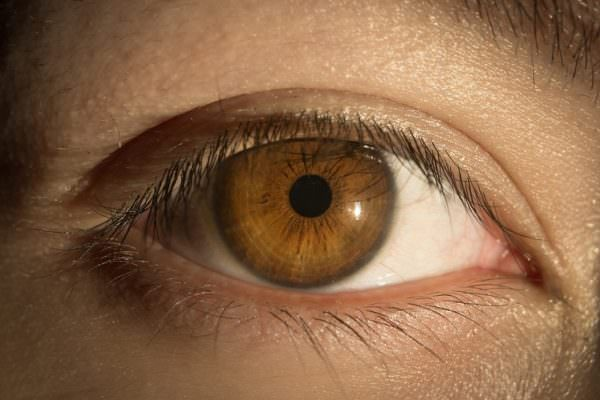 Nuova scoperta dagli USA, dagli occhi è possibile percepire il livello di stress di una persona
