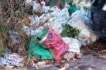 """""""Una ennesima e triste immagine del quartiere"""": denunciata la scoperta di una piccola discarica a Vulcania"""