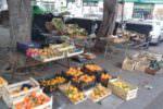 Catania, venditori ambulanti abusivi e mercatini improvvisati sui marciapiedi: multe e sequestri