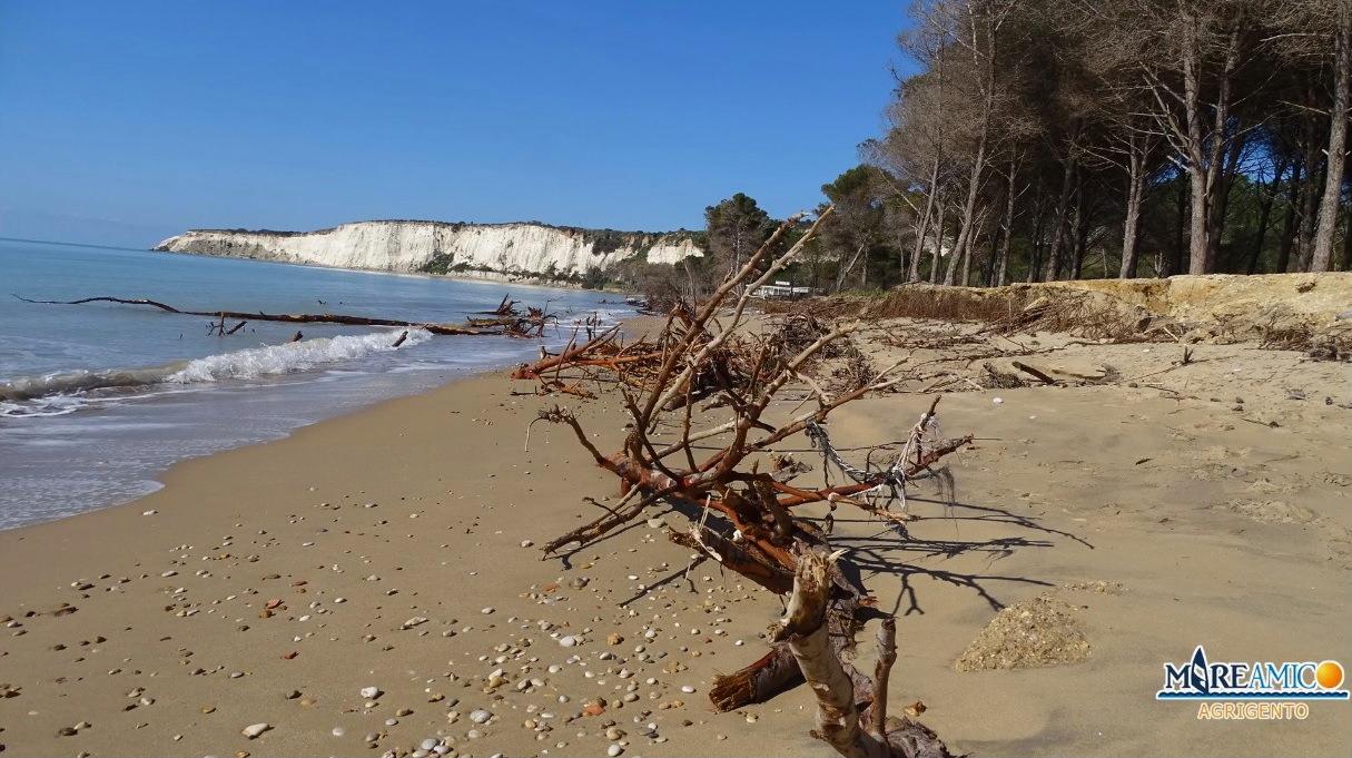 """Eraclea Minoa, """"tesoro"""" della Magna Grecia nel degrado: emergenza erosione e disboscamento – FOTO e VIDEO"""