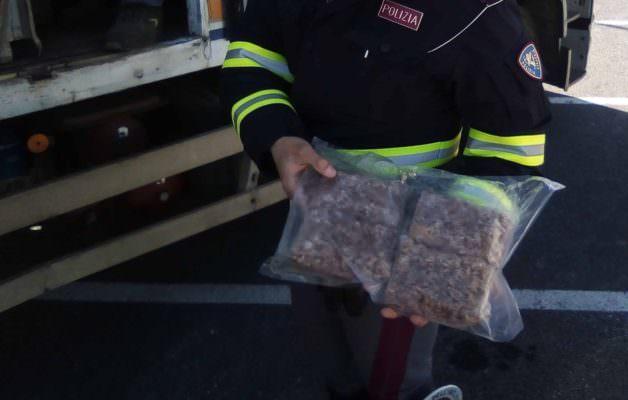 Hamburger, salsiccia, gamberi e salmone in pessimo stato: sequestrati 500 chili di carne e pesce