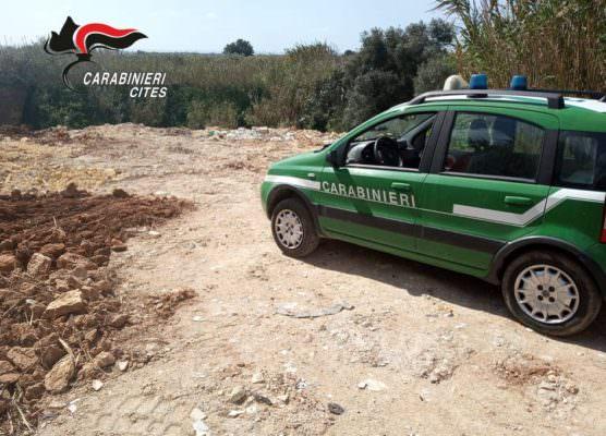Lastre di eternit, auto ed elettrodomestici abbandonati nel Trapanese, i carabinieri sequestrano due cave di tufo dismesse