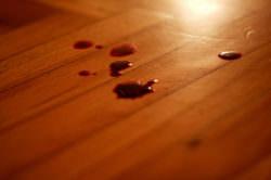 Due colpi di pistola al torace e una pozza di sangue, uccisa badante: 82enne fermato per l'omicidio