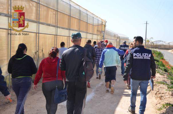 Donne, tunisini e rumeni costretti a vivere in azienda e sfruttati: denunciati due titolari di un'azienda agricola