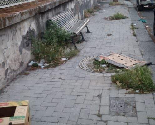 Degrado a Catania, richiesta di interventi per erbacce fastidiose da ogni parte della città – Le FOTO