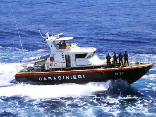 Tonnellate di scarti di pesce non registrati: scatta sanzione da 6mila euro