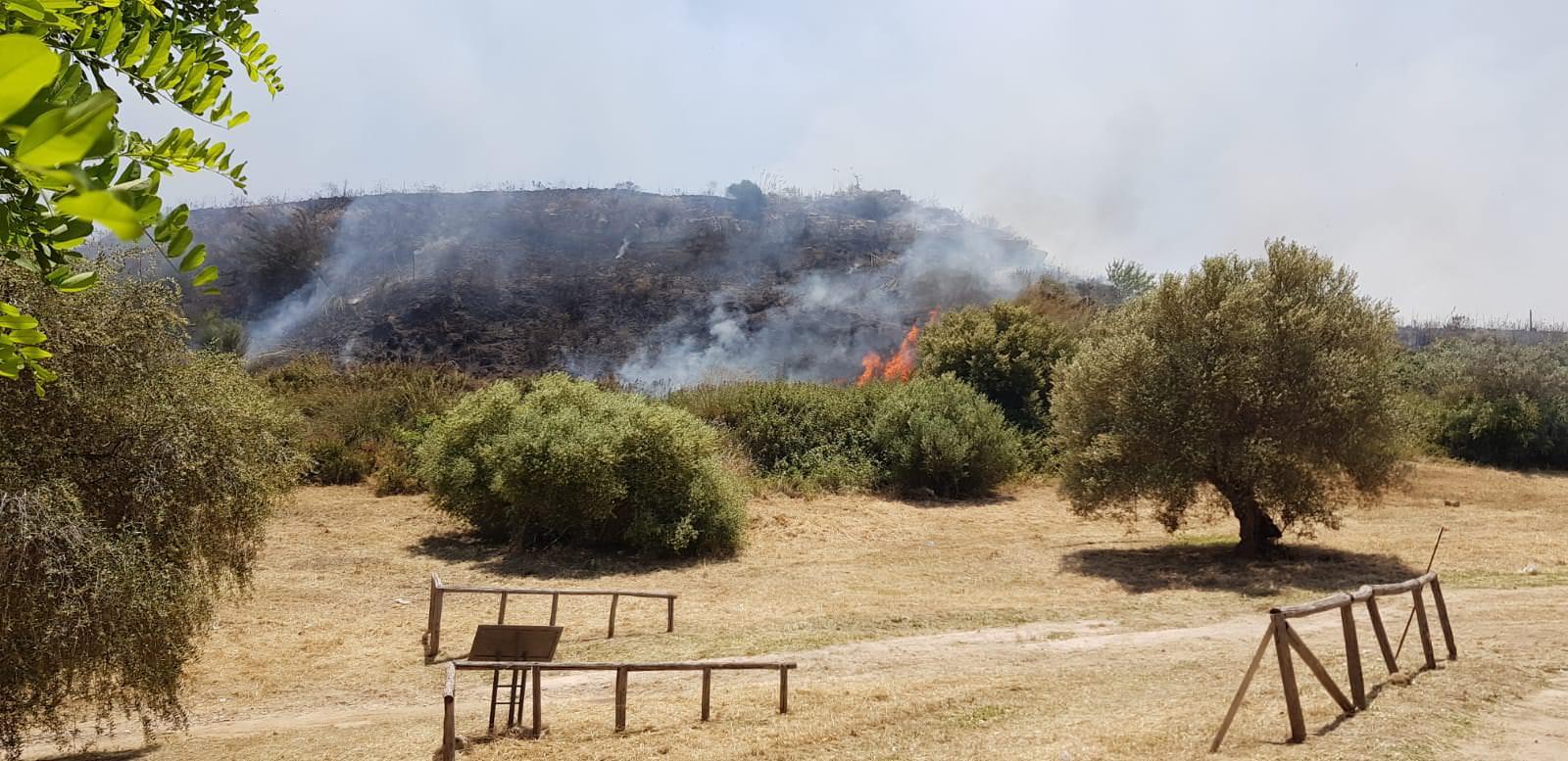 Incendio di Morgantina, niente danni al sito archeologico: vigili del fuoco tempestivi – FOTO
