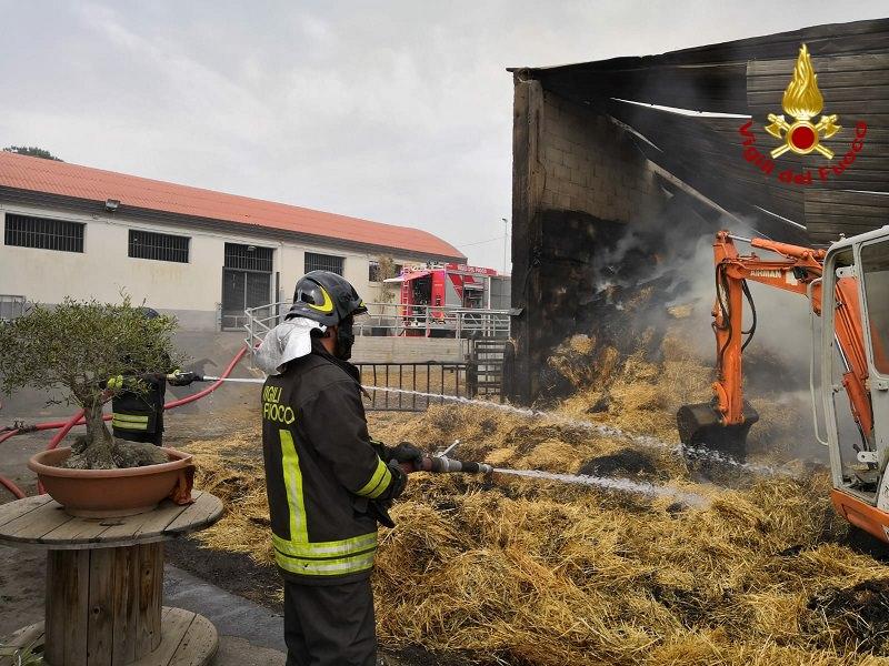 Aci Catena, incendio di sterpaglie coinvolge fienile: salvati 64 bovini di un allevamento