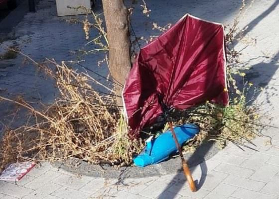 """Degrado, sporcizia e incuria: """"oasi verdi"""" del quartiere Borgo-Sanzio abbandonate. Cerri: """"Amministrazioni assenti"""""""